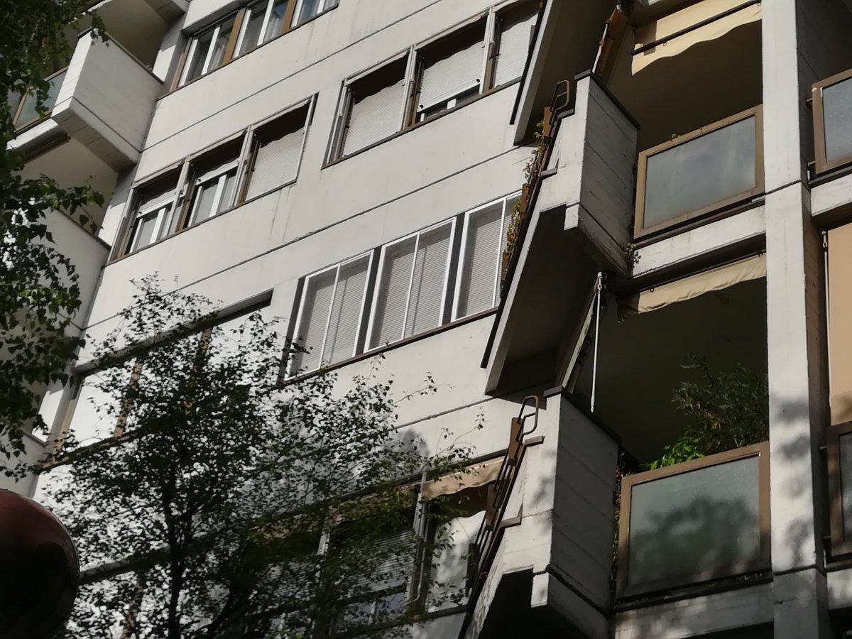 Rete Per Gatti Condominio rete per gatti balcone