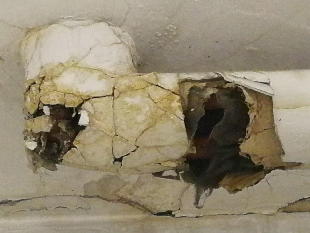 Rumore Nel Muro Di Casa topi nei muri