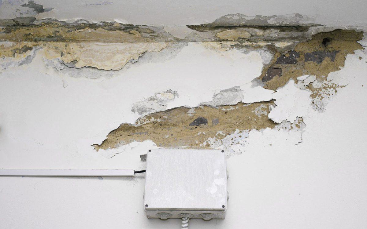 Locazione, condominio e danni da infiltrazioni. Quando il locatore è responsabile per i danni sofferti dall'inquilino?