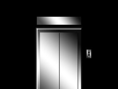 Uso dell'ascensore e animali domestici: quando il divieto d'introdurli può considerarsi lecito?