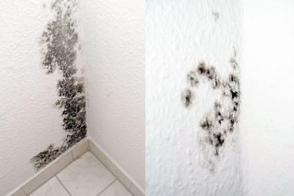 Infiltrazioni in un'unità immobiliare e normale tollerabilità ai sensi dell'art. 844 c.c.: le due cose non sono collegate.