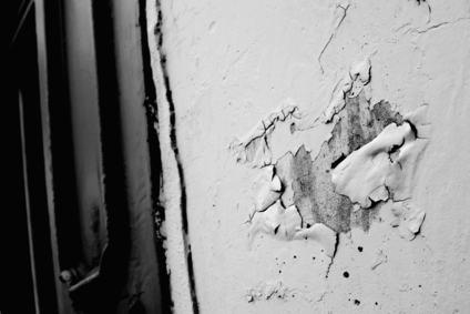 Umidità di risalita: il condominio non è responsabile se il danno dipende anche dal cambiamento di destinazione d'uso del locale