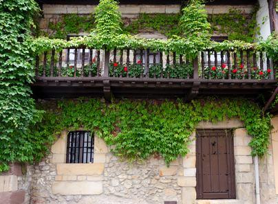 I pannelli ornamentali per i rampicanti possono essere installati sul balcone