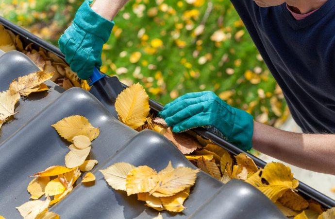 Chi paga le spese di pulizia e sostituzione della grondaia?