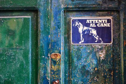 Non basta il cartello «attenti al cane» all'ingresso della residenza. Responsabilità per danni derivanti dal morso.
