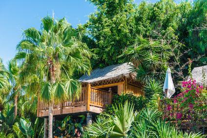 Casa sull 39 albero quando abusiva for Planimetrie della casa sull albero