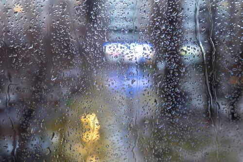 Umidità in appartamento, quando il Condominio ne risponde