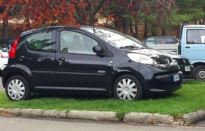 Condòmini che parcheggiano sul prato condominiale e contromisure per evitarglielo