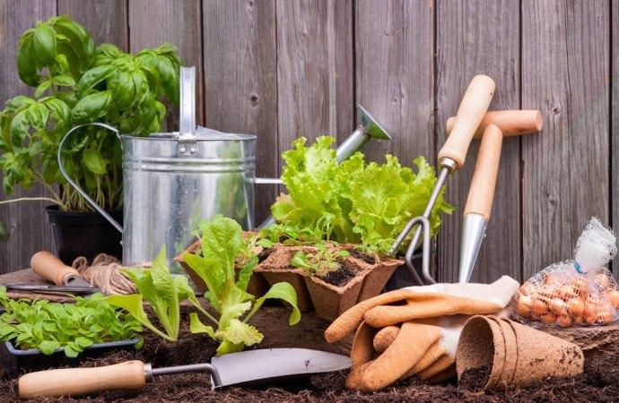 Servizi di pulizia, giardinaggio e utilizzo dei voucher in condominio. Alcune considerazioni sul corretto utilizzo