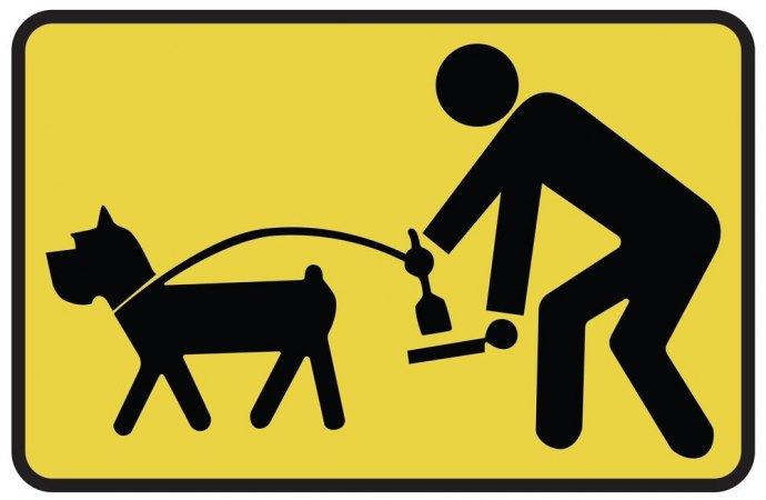 Imbrattamento degli spazi pubblici e condominiali da parte del cane. Responsabile il padrone