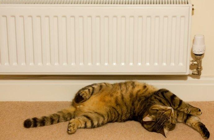 Nulla la delibera condominiale che determina la quota dei consumi di riscaldamento da dispersione termica in assenza di perizia tecnica.