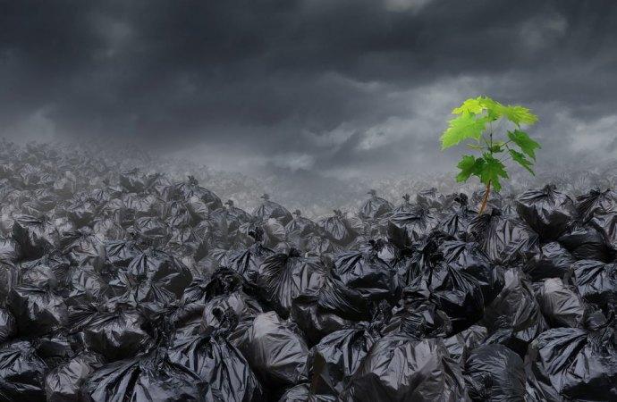 Rifiuti: chi inquina paga. Da oggi il Comune saprà la quantità dei rifiuti prodotti dalle singole utenze domestiche