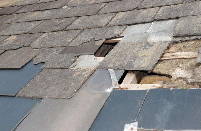 L'azienda risarcisce i danni anche se la tettoia che cade sull'immobile è stata divelta dal vento