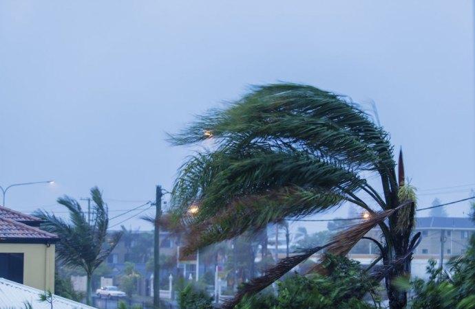Danni in condominio: la bufera di vento non esclude la responsabilità.