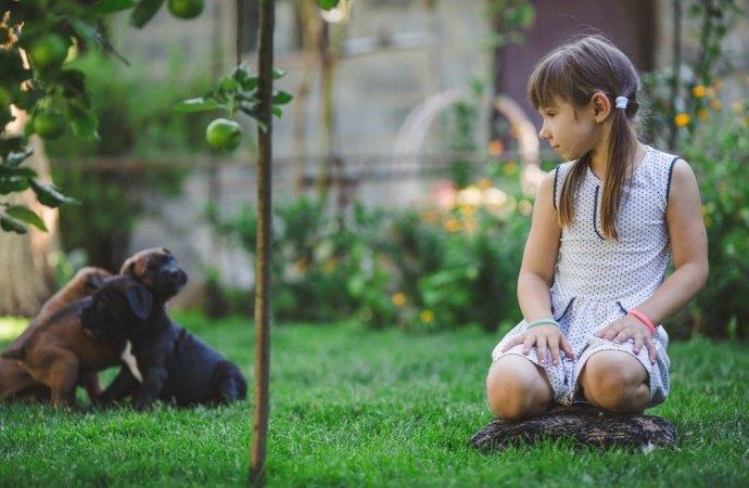 Cani liberi nel cortile? Vanno risarciti i condòmini a causa delle deiezioni degli animali e del cattivo odore