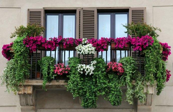 Balaustre dei balconi. La spesa per gli elementi decorativi come deve essere ripartita?