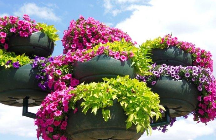 Rimozione fioriere condominiali. Non è necessario alcun titolo edilizio abilitativo