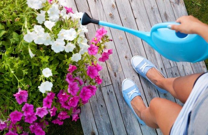 Infiltrazioni: Il locatore, in qualità di possessore, resta responsabile dei danni causati dalla collocazione di fioriere sulla terrazza a livello
