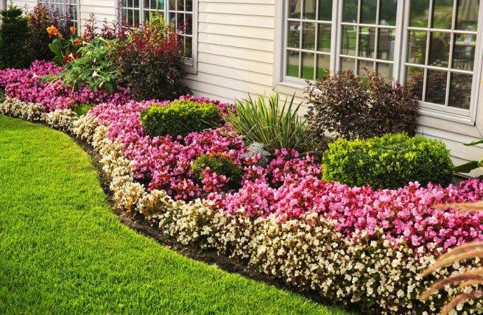 Fioriere permanenti, piante in vaso, potatura e manutenzione: facciamo il punto sul bonus verde