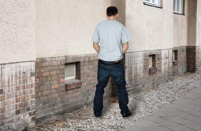 Atti osceni in condominio: anche il singolo condomino, e non solo l'amministratore, può presentare querela per violazione di domicilio rispetto alle parti comuni dell'edificio