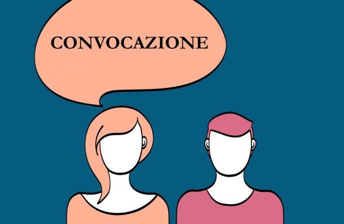Convocazione assembleare da parte di un soggetto non avente diritto sulla deliberazione: natura del vizio della delibera