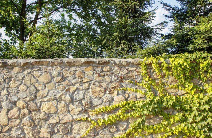 Posso costruire un muro di recinzione del mio giardino?