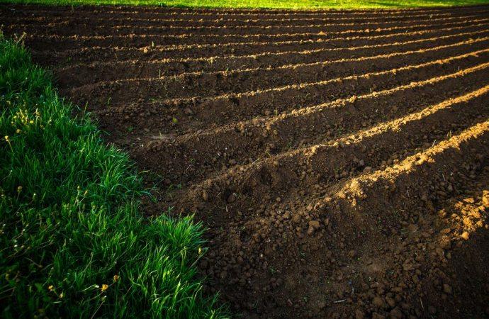 Profili fiscali della compravendita di terreni agricoli